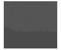 Babor Institute Skincare Hanne Vandecasteele Logo